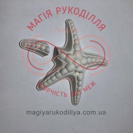 Гіпсоформа морська зірка(брак)