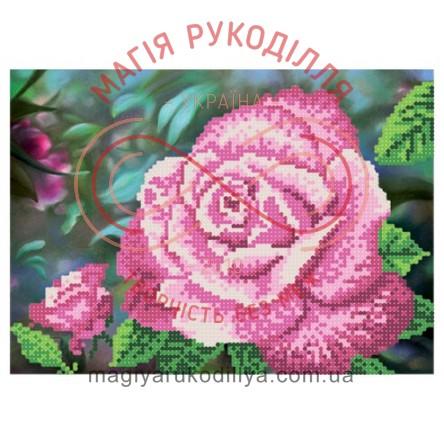 Схема для вишивання бісером - Т6 39/Р Королева саду рожева