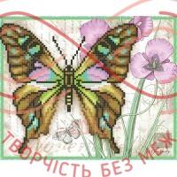 Схема для вишивання бісером - Т4 38/Р Метелик малахіт