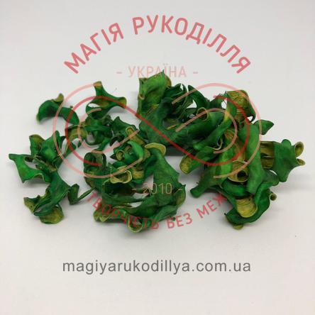 Природний матеріал сухоцвіт декоративний пелюстки (40гр) - зелений