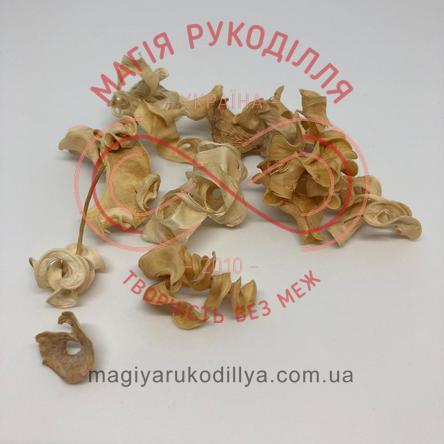 Природний матеріал сухоцвіт декоративний пелюстки (40гр) - білий